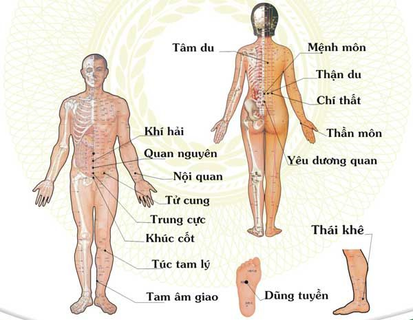 Các huyệt đạo trên thân thể người là thế nào?